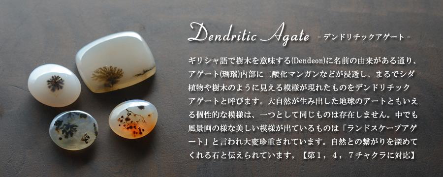 デンドリティックアゲートルースヘッダー